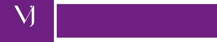 Vaibhav Footer Logo